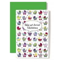 Carte Double Naissance Landaus multicolore