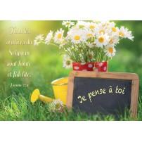 CARTE VB : Bouquet de fleurs, ardoise et arrosoir