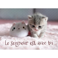 MINI CARTE : Chaton et peluche