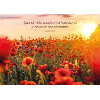 CARTE VB : Champ de coquelicots