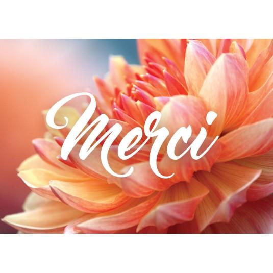 Mini Carte Chrysanthème orangé (Merci)