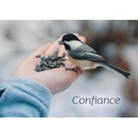CARTE FLASH : oiseau picorant dans une main (Confiance)