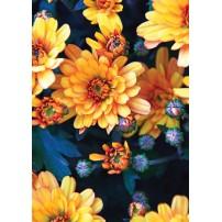 CARTE ST : Chrysanthèmes jaune orangés
