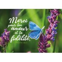 CARTE VB : Papillon sur fleurs