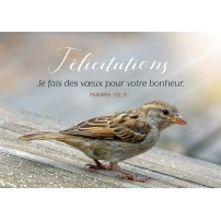 CARTE VB : Oiseau (Félicitations)