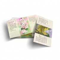 Lot de 100 mini-cartes Source de vie