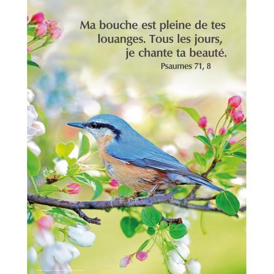 Poster Oiseau sur une branche en fleur