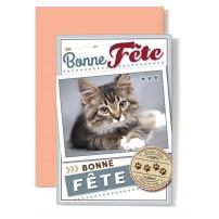 """Carte Double """"Bonne Fête"""" Chat tigré couché sur le sol"""