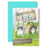 """Carte Double """"Bonne Fête"""" Trois chatons dans l'herbe"""