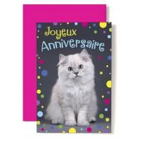 Carte Double Anniversaire Chat blanc et cotillons multicolores