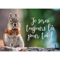 Mini Carte Écureuil grignotant un gland sur un muret