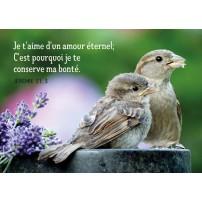 Mini Carte Couple d'oiseaux et fleurs violettes