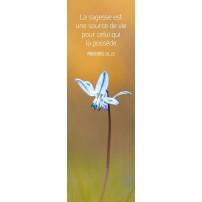 Signet Fleur bleue sur fond orange