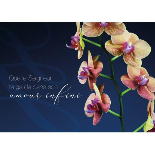 Carte Avec Message Orchidées sur fond bleu