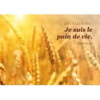 Carte Avec Verset Epis de blé dans un champ