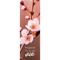 SIGNET : Fleurs roses sur une branche d'arbre