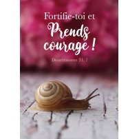 CARTE VB : Escargot devant un fond de fleurs rose