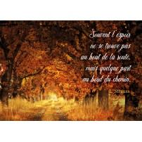 CARTE PENSEE : Chemin sous les arbres en automne